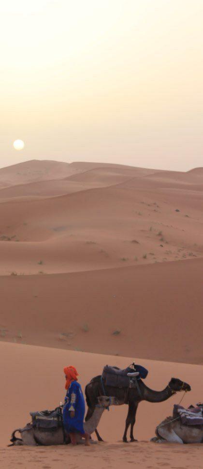 desert_2@2x